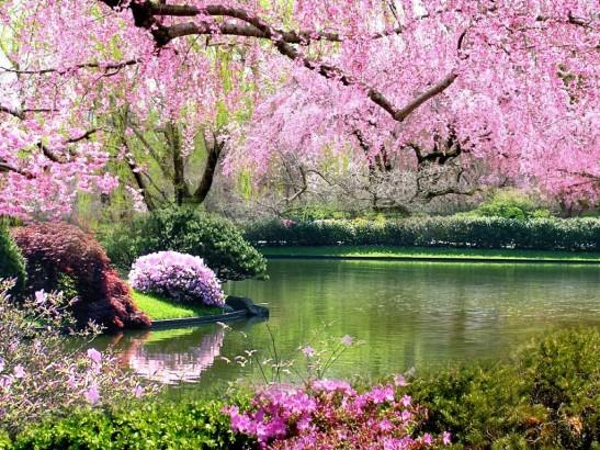 springtime-